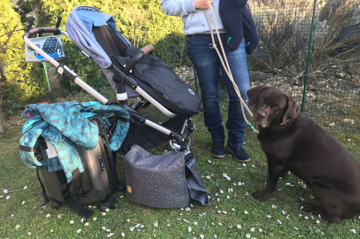 Mobil sein mit Baby und Hund