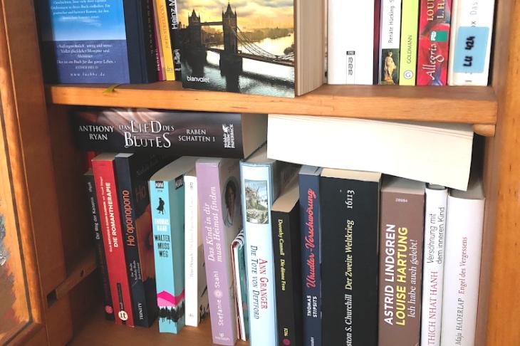 Bücher im Bücherregal, oft in zwei Reihen und übereinander!