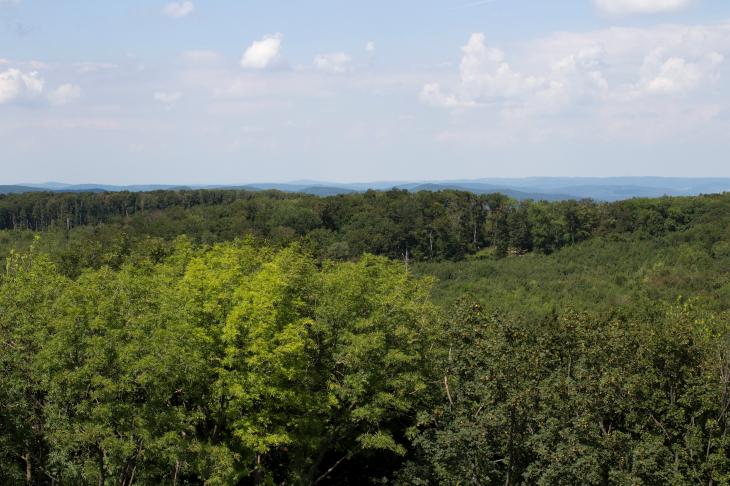 UNESCO Biosphärenpark Wienerwald